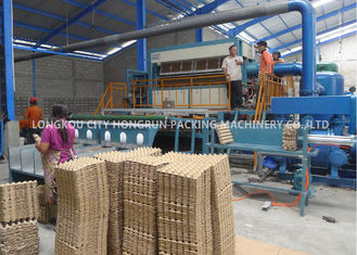 Fully Automatic Chicken Farm Pulp Egg Tray Machine With Multilayer Drying Line