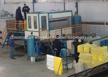 Recycle Paper Pulp Mill Egg Box Machine Large Capacity 6000PCS/H