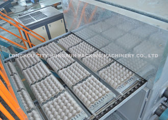 TOP quality egg tray machine , High Quality Paper Egg Tray Machine